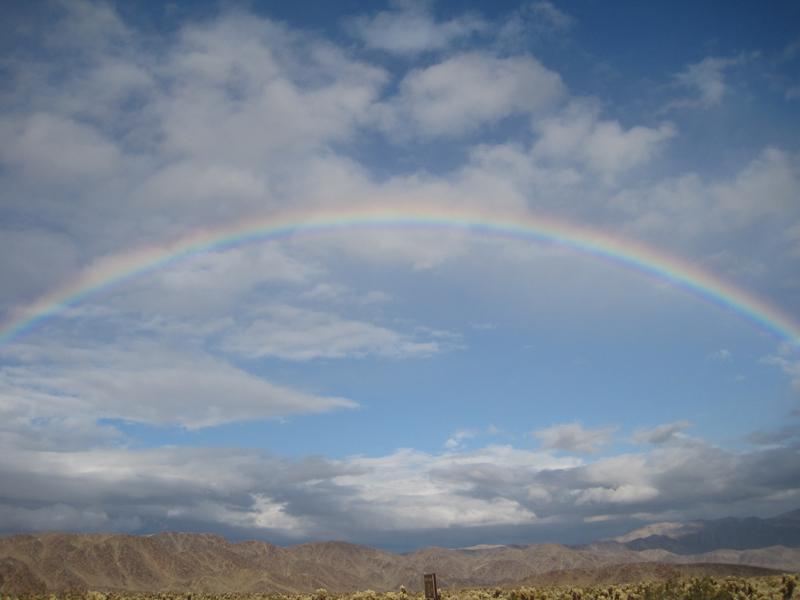 Rainbow smaller