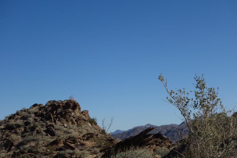blue sky 800x533