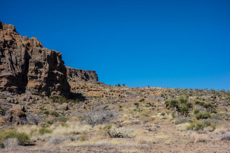 Mojave Feb 2014-1-7