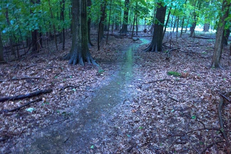 buckeye-trail-1-11