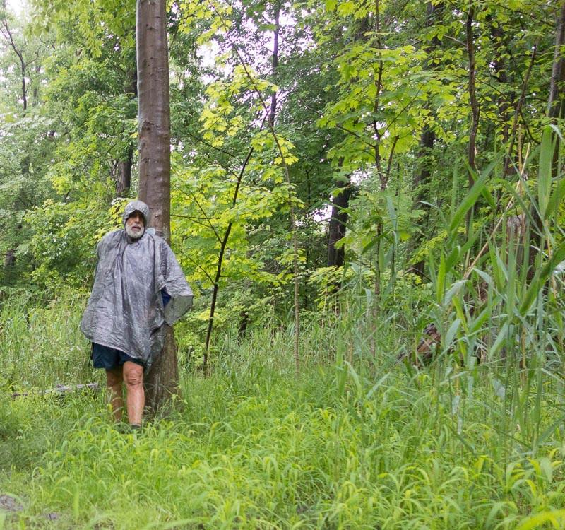 buckeye-trail-1-12