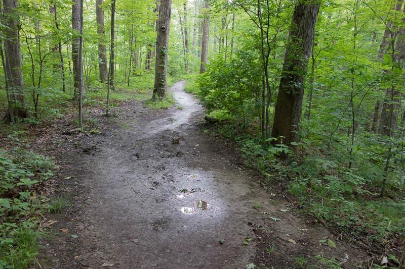 buckeye-trail-1-13