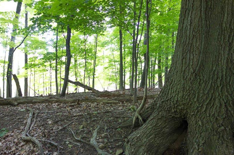 buckeye-trail-1-23