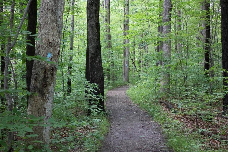 buckeye-trail-1-25