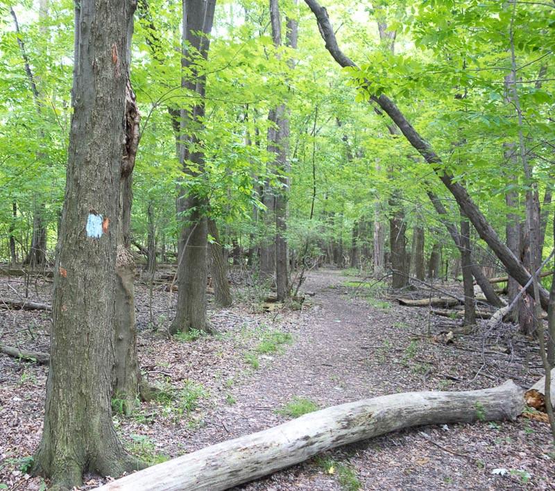 buckeye-trail-1-8