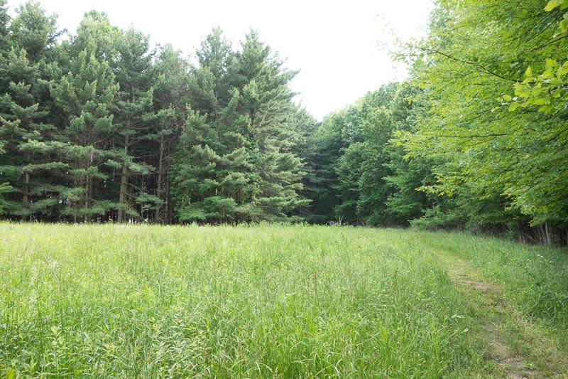 buckeye-trail-1