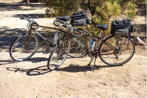 Last year we bought Novara Safari touring bikes from REI