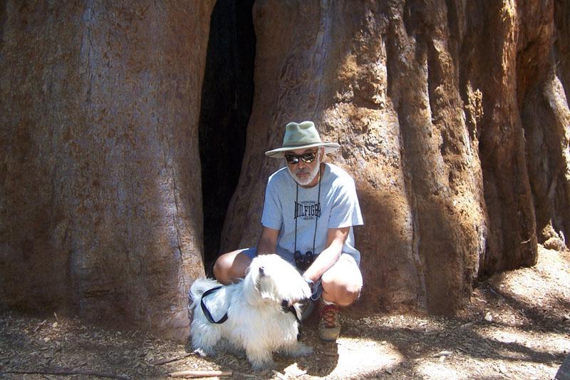 Corky on leash on a hike