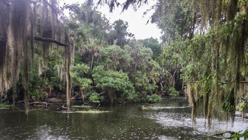 Backpacking in the rain Florida 05-20-2015