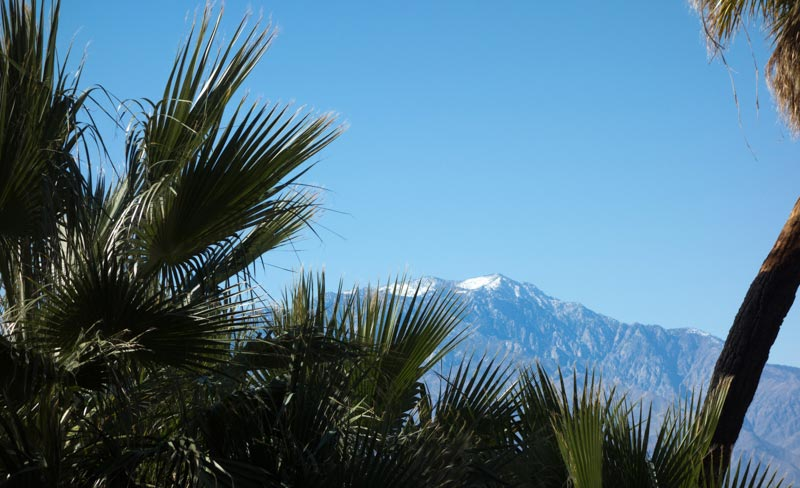 Mt-San-Jacinto-and-Palms