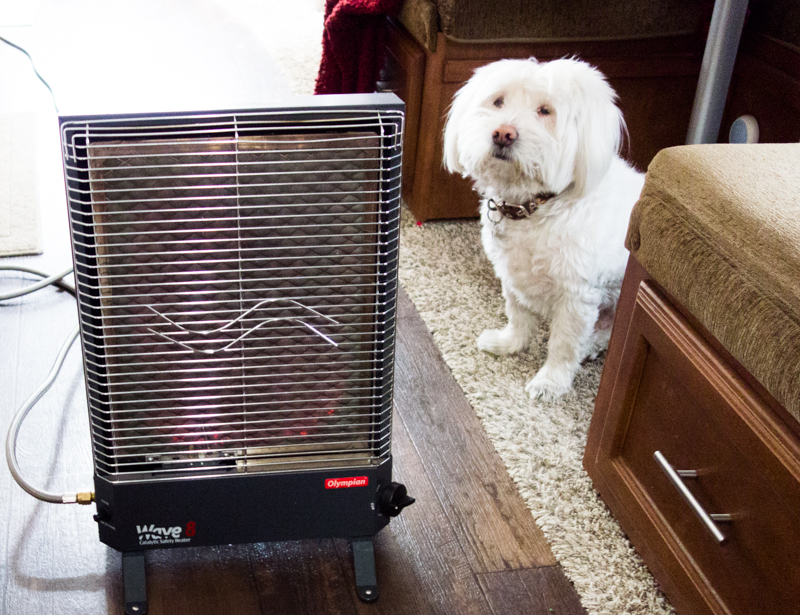 Corky likes to lay in front of the heater at night. He is warmer than us!